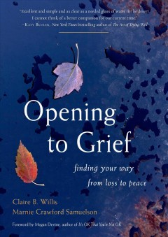 Opening to grief : finding your way from loss to peace by Willis, Claire B.