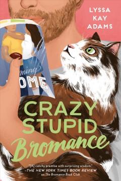 Crazy stupid bromance by Adams, Lyssa Kay