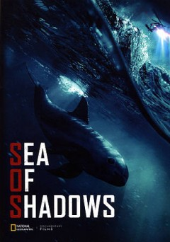Sea of shadows by
