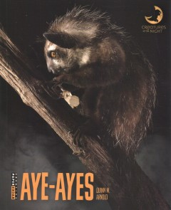 Aye-ayes by Arnold, Quinn M.