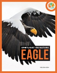 Eagle by Gish, Melissa