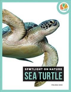 Sea turtle by Gish, Melissa