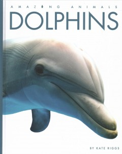 Dolphins by Riggs, Kate