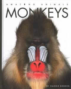 Monkeys by Bodden, Valerie