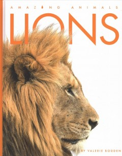 Lions by Bodden, Valerie