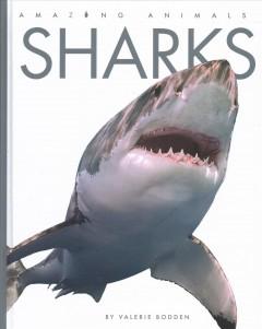 Sharks by Bodden, Valerie