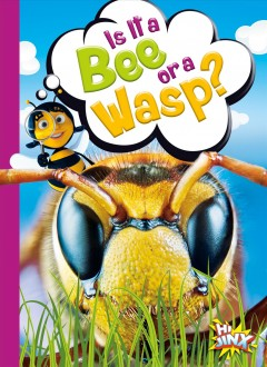 Is it a bee or a wasp? by Terp, Gail