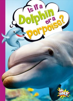 Is it a dolphin or a porpoise? by Terp, Gail